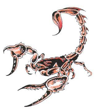 Free cool Scorpion tattoo designs