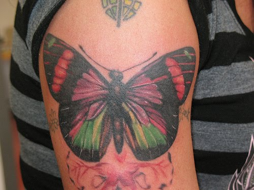 Butterfly tattoos tattoo art gallery for Butterfly tattoo arm designs