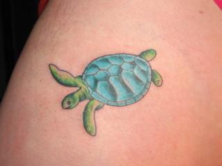 Turtle tattoos tattoo art gallery for Little turtle tattoo
